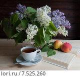 Купить «Утренний чай и букет сирени на столе», фото № 7525260, снято 2 июня 2015 г. (c) Наталия Ромашова / Фотобанк Лори