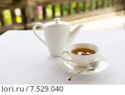 Купить «tea-set on table at restaurant or teahouse», фото № 7529040, снято 21 февраля 2015 г. (c) Syda Productions / Фотобанк Лори