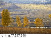 Купить «Осенний пейзаж. Забайкальский край», эксклюзивное фото № 7537348, снято 26 сентября 2007 г. (c) Александр Щепин / Фотобанк Лори