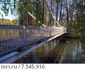Уменьшенная копия Крымского моста на реке Пахре, парк в городе Троицке, Москва (2014 год). Стоковое фото, фотограф SevenOne / Фотобанк Лори