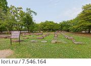 Купить «Камни основания первоначального донжона (1597 г.) замка Окаяма. Национальный исторический объект Японии», фото № 7546164, снято 20 мая 2015 г. (c) Иван Марчук / Фотобанк Лори