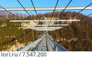 Купить «Подвесной мост скайбридж в Скайпарке Сочи, Ахштырское ущелье», фото № 7547200, снято 22 ноября 2014 г. (c) DiS / Фотобанк Лори