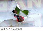Отверстие в рекламном баннере. Стоковое фото, фотограф Александр Чернецов / Фотобанк Лори