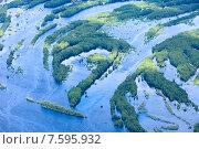 Купить «Пойма лесной реки летом во время паводка», фото № 7595932, снято 20 июня 2015 г. (c) Владимир Мельников / Фотобанк Лори