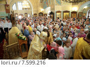 Купить «Митрополит Крутицкий и Коломенский Ювеналий на литургии в храме», эксклюзивное фото № 7599216, снято 21 июня 2015 г. (c) Дмитрий Неумоин / Фотобанк Лори