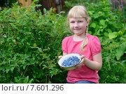 Купить «Девочка с урожаем  жимолости», фото № 7601296, снято 21 июня 2015 г. (c) Марина Славина / Фотобанк Лори