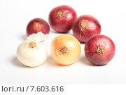 Купить «Репчатый лук разных сортов на белом фоне», эксклюзивное фото № 7603616, снято 22 июня 2015 г. (c) Яна Королёва / Фотобанк Лори