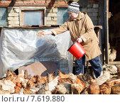 Женщина-фермер кормит куриц. Стоковое фото, фотограф Евгений Чернецов / Фотобанк Лори