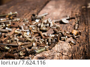 Старые крепёжные детали на гнилых деревянных досках. Стоковое фото, фотограф Alexander Alexeev / Фотобанк Лори