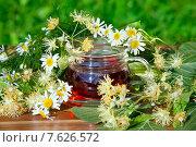 Чашка с травяным настоем, цветами липы  и ромашки на деревянном столе. Стоковое фото, фотограф Татьяна Белова / Фотобанк Лори