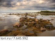 Белое море. Стоковое фото, фотограф Александр Коротков / Фотобанк Лори