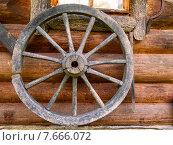 Колесо от телеги. Стоковое фото, фотограф Alexey Matushkov / Фотобанк Лори