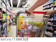 Купить «woman buy products with her trolley», фото № 7684928, снято 21 января 2015 г. (c) Wavebreak Media / Фотобанк Лори