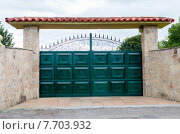 Купить «Iron gate with stone wall», иллюстрация № 7703932 (c) PantherMedia / Фотобанк Лори