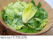 Купить «food green fresh meal vegetable», фото № 7735076, снято 24 августа 2019 г. (c) PantherMedia / Фотобанк Лори