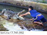 Опасное шоу крокодилов в Таиланде (2014 год). Редакционное фото, фотограф Andrei Leventcov / Фотобанк Лори