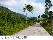 Пустая бетонная дорога в тропических горах острова Самуи, Таиланд (2014 год). Стоковое фото, фотограф Andrei Leventcov / Фотобанк Лори