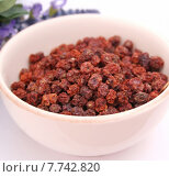 Купить «food fruit spice fruits berry», фото № 7742820, снято 22 августа 2019 г. (c) PantherMedia / Фотобанк Лори