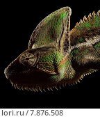 chameleon poikilotherm blaze of colours. Стоковое фото, фотограф Andy Hunger / PantherMedia / Фотобанк Лори