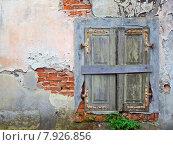 Купить «wall window closed shutter decompose», фото № 7926856, снято 21 марта 2019 г. (c) PantherMedia / Фотобанк Лори