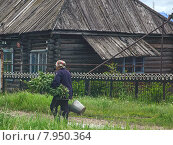 Пожилая женщина идет по деревне с вёдрами и ветками в руках. Стоковое фото, фотограф рустам ниязов / Фотобанк Лори