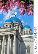 Купить «Святой Троицкий собор в Санкт-Петербурге, архитектурный пейзаж. Весна», фото № 7984484, снято 20 ноября 2017 г. (c) Зезелина Марина / Фотобанк Лори