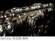 Купить «flute centerpiece dullness woodwind clap», фото № 8035464, снято 19 января 2019 г. (c) PantherMedia / Фотобанк Лори