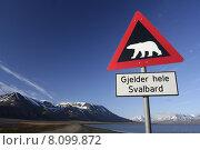 Купить «arctic svalbard spitzbergen longyearbyen polar», фото № 8099872, снято 18 ноября 2018 г. (c) PantherMedia / Фотобанк Лори