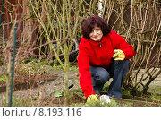 Купить «young woman leisure plant spring», фото № 8193116, снято 24 февраля 2018 г. (c) PantherMedia / Фотобанк Лори