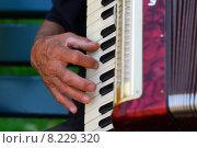 Купить «instrument keyboard measure concertina harmonica», фото № 8229320, снято 23 января 2019 г. (c) PantherMedia / Фотобанк Лори