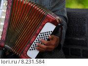 Купить «instrument keyboard measure instruments concertina», фото № 8231584, снято 23 января 2019 г. (c) PantherMedia / Фотобанк Лори