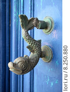 Купить «door dolphin knocker call waiting», фото № 8250880, снято 24 августа 2019 г. (c) PantherMedia / Фотобанк Лори