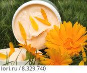 Купить «beauty cream cosmetics eco cure», фото № 8329740, снято 26 июня 2019 г. (c) PantherMedia / Фотобанк Лори