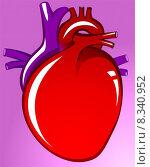 Купить «Heart», иллюстрация № 8340952 (c) PantherMedia / Фотобанк Лори