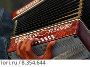 Купить «instrument keyboard measure instruments concertina», фото № 8354644, снято 23 января 2019 г. (c) PantherMedia / Фотобанк Лори