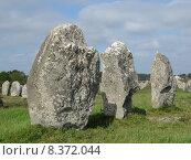 Купить «france brittany menhir carnac hinkelstein», фото № 8372044, снято 22 апреля 2018 г. (c) PantherMedia / Фотобанк Лори