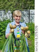 Купить «Пожилая женщина показывает урожай лука на дачном участке», эксклюзивное фото № 8379576, снято 25 июля 2015 г. (c) Елена Коромыслова / Фотобанк Лори