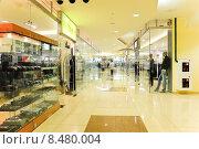 Купить «Интерьер торгового центра», эксклюзивное фото № 8480004, снято 18 апреля 2013 г. (c) Алёшина Оксана / Фотобанк Лори