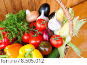 Купить «Свежие овощи в корзинке: перец, помидоры, чеснок, кукуруза, огурец», фото № 8505012, снято 1 августа 2015 г. (c) E. O. / Фотобанк Лори