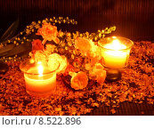 wellness still life roses candles. Стоковое фото, фотограф Bärbel Neumann / PantherMedia / Фотобанк Лори