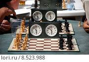 Купить «sport sports chess board play», фото № 8523988, снято 21 февраля 2019 г. (c) PantherMedia / Фотобанк Лори
