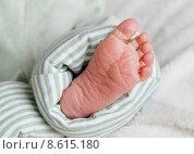 Купить «baby foot newborn toes neonate», фото № 8615180, снято 24 марта 2019 г. (c) PantherMedia / Фотобанк Лори