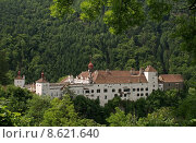 Купить «castle fortress chateau styria herberstein», фото № 8621640, снято 24 мая 2019 г. (c) PantherMedia / Фотобанк Лори