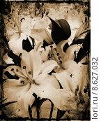 Купить «Grunge lillies», иллюстрация № 8627032 (c) PantherMedia / Фотобанк Лори