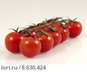 Купить «tomato row ten solanum cherrytomate», фото № 8630424, снято 22 июля 2019 г. (c) PantherMedia / Фотобанк Лори