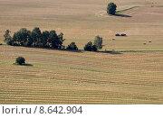 Купить «summer field harvest straw farmer», фото № 8642904, снято 6 июля 2020 г. (c) PantherMedia / Фотобанк Лори