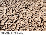Купить «dry desert barren drought dryness», фото № 8788280, снято 17 июня 2019 г. (c) PantherMedia / Фотобанк Лори