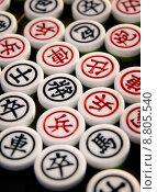 Купить «chinese chess», фото № 8805540, снято 16 июня 2019 г. (c) PantherMedia / Фотобанк Лори