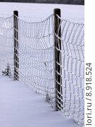 Купить «post fence freezes eismantel eispanzer», фото № 8918524, снято 23 марта 2019 г. (c) PantherMedia / Фотобанк Лори