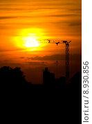 Купить «crane sunset », фото № 8930856, снято 15 сентября 2019 г. (c) PantherMedia / Фотобанк Лори